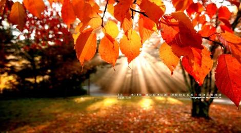 http://anesherlii.persiangig.com/image/2%20%282%29.jpg